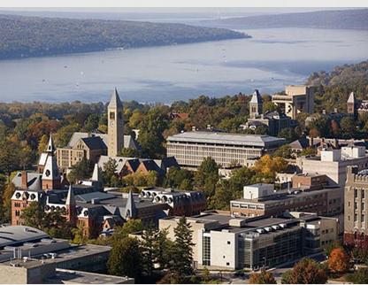 留学选择国外大学的程序