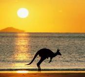 赴澳留学选择什么样的本科专业最好