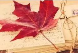 加拿大留学趋势剖析
