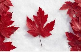 加拿大申请奖学金,不能忽视的材料